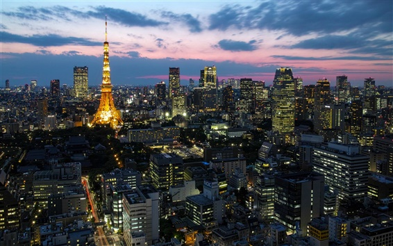 Wallpaper Japan capital Tokyo, city lights, tower, houses, skyscrapers, dusk