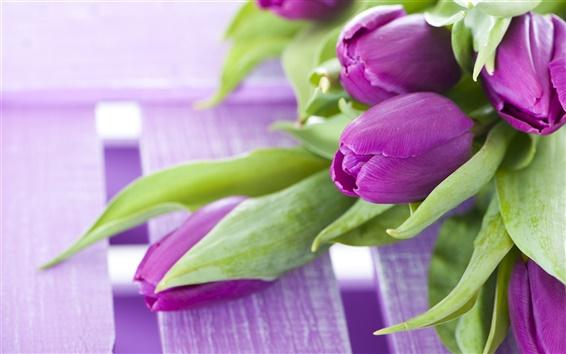 Fondos de pantalla Flores de color púrpura, un ramo de tulipanes