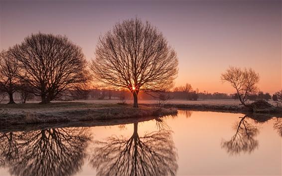 Papéis de Parede Rio Stour, Suffolk, Reino Unido natureza cenário, nascer do sol, geada, árvores