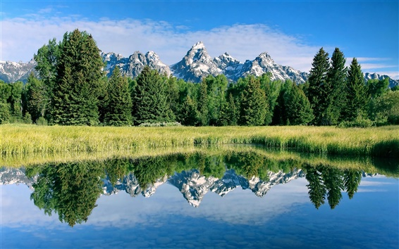 Wallpaper Stunning scenery, mountains, lake, plants, trees, water reflection