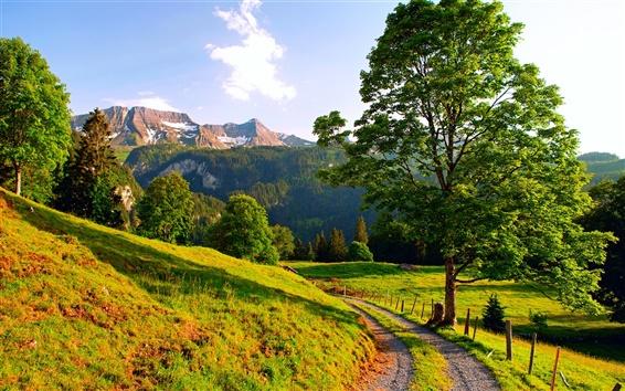 Wallpaper Switzerland, summer landscape, mountains, road, trees