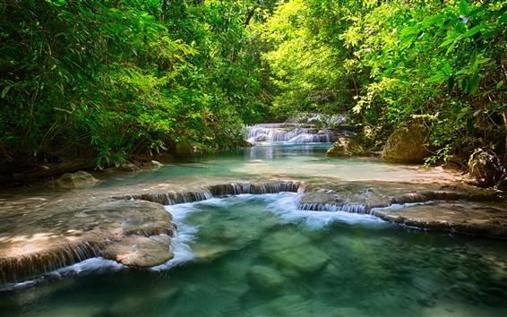 壁紙 タイの滝、川、緑、木、葉