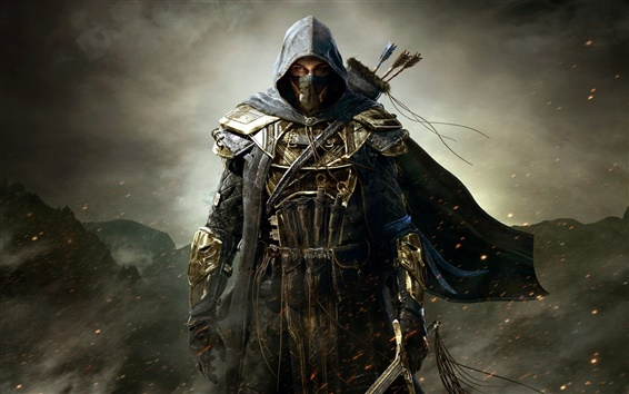 Wallpaper The Elder Scrolls Online, warrior, assassin