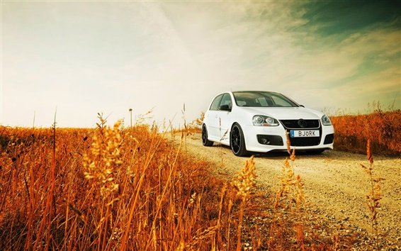 Wallpaper Volkswagen Golf white car, road, grass