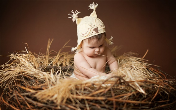 Wallpaper Cute baby sitting on the nest