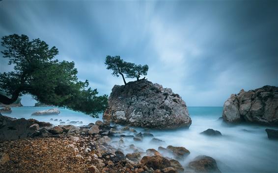 Fond d'écran Côte France, les arbres, les rochers, la mer Méditerranée, le ciel bleu