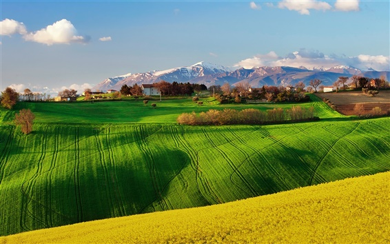 Wallpaper Italy nature scenery, fields, spring, rapeseed, sky