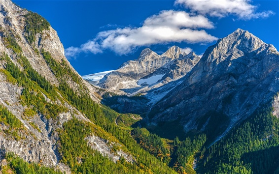 Papéis de Parede Monte Moloch do Canadá