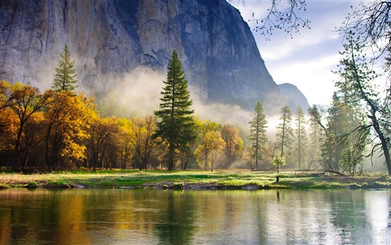 Wallpaper Nature morning scenery, forest, mountains, lake, mist