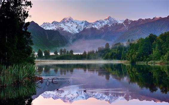 Обои Новой Зеландии утром пейзажи, горы, озеро, лес, отражение воды