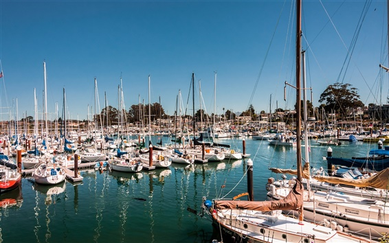 Wallpaper Santa Cruz, California, USA, bay, yacht, sail, ships, boats