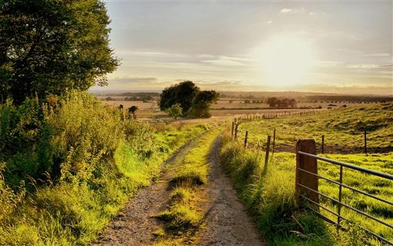 Обои Лето природа пейзажем, дорога, деревья, забор, трава, ВС