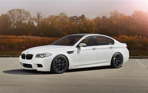 Wallpaper BMW M5 F10 white car