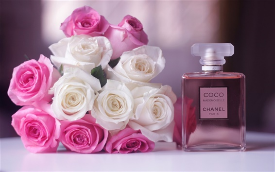 Wallpaper Chanel Coco Mademoiselle perfume, white and pink rose flowers