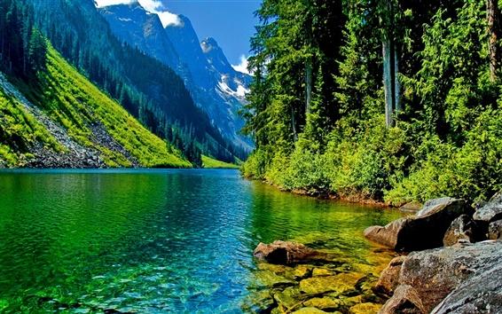 Wallpaper Nature landscape, mountains, river, trees, rocks