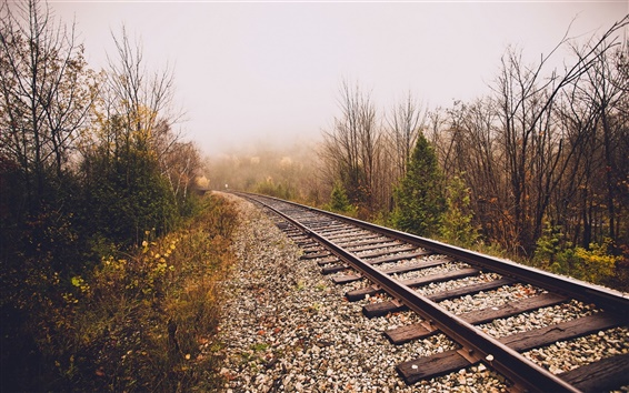 Wallpaper Railroad, fog, trees