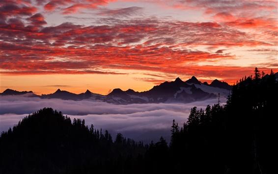 Wallpaper USA, Oregon, mountainous, forest, sky, sunset
