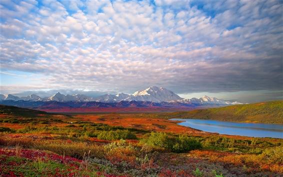 Fond d'écran USA nature paysage, parc national de Denali