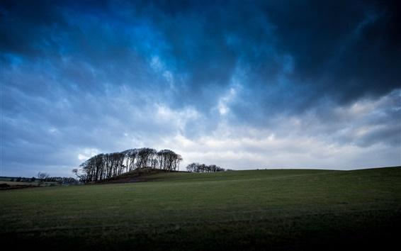 Fondos de pantalla Reino Unido, Escocia, hierba, valles, árboles, cielo azul, nubes