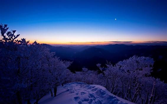 Обои Зимний пейзаж, вид сверху горы, снег, деревья, закат