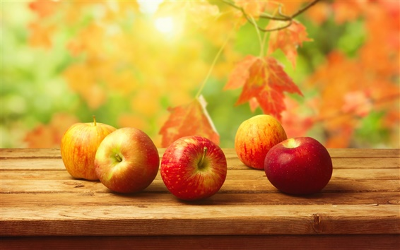 Wallpaper Autumn harvest, red apples on table, delicious fruit
