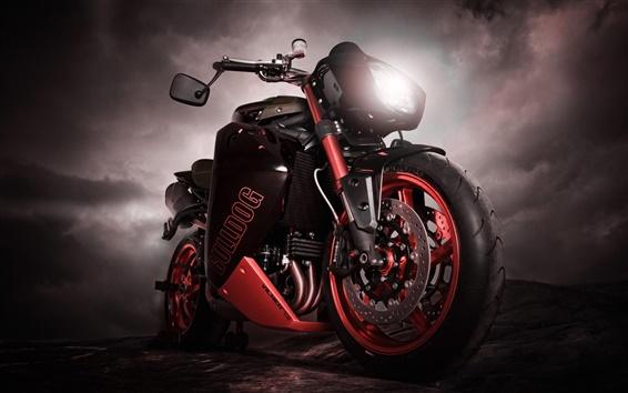 Papéis de Parede Bulldog motocicleta