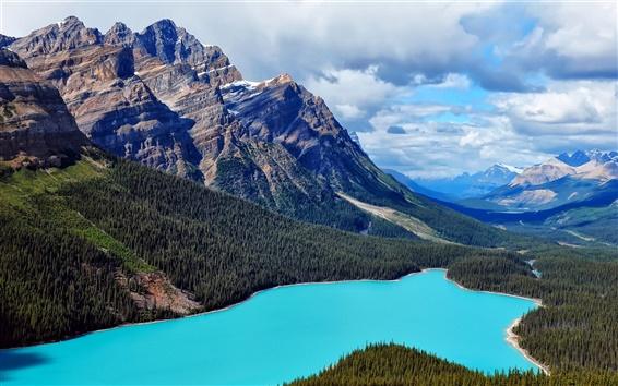 Обои Канада природе пейзажи, горы, озеро, лес