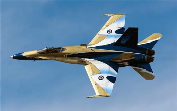 Обои McDonnell Douglas, CF-18 Hornet многофункциональный истребитель