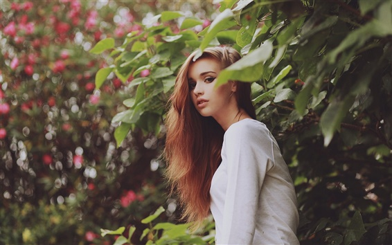 Wallpaper Pretty girl, brown hair