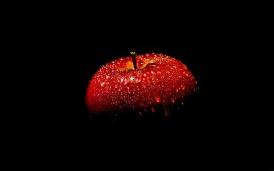 Fond d'écran Pomme rouge, fond noir