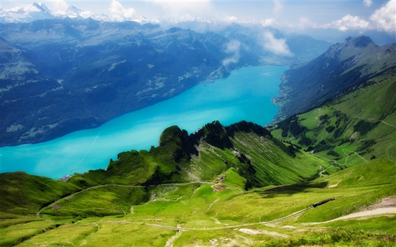 Обои Швейцарии, Альпы, Rothorn, озера Бриенц, трава, зеленая
