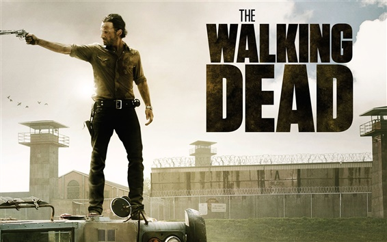 Обои The Walking Dead 2013