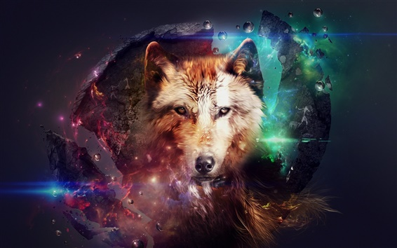 Wallpaper Abstract design, wolf, collage, space, colorful