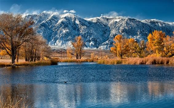 Обои Осень, заснеженные горы, желтые листья деревьев, озеро