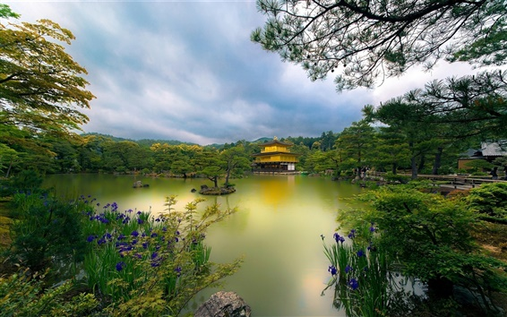 Wallpaper Golden Pavilion temple, Kyoto, Japan, lake, trees, flowers, park