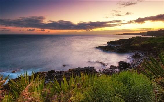 Fondos de pantalla Hawaii, puesta del sol, océano, naturaleza costa del paisaje
