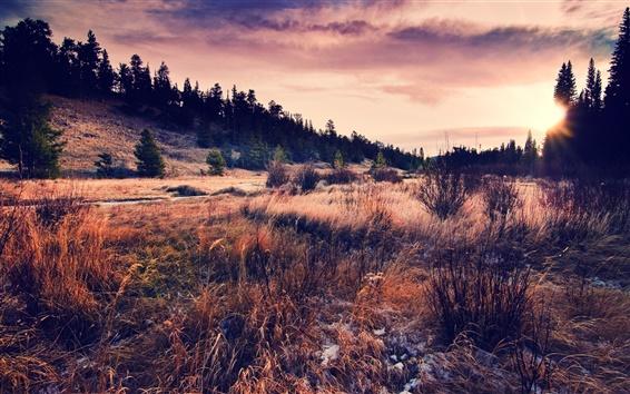 Wallpaper Hills, grass, sky, clouds, sunset, autumn