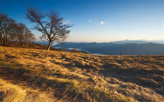 Обои Природа пейзаж, деревья, горы, трава