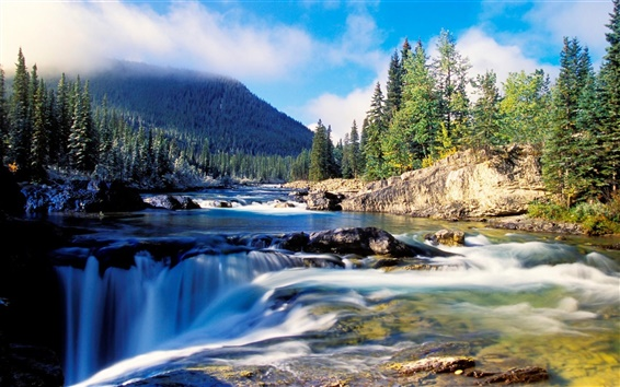 Wallpaper Nature scenery, forest, thick spruce, river, rocks, waterfalls, mountain