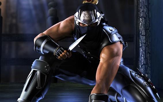 Fondos de pantalla Ninja Gaiden, cuchillo, noche