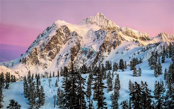Fond d'écran Amérique du Nord, Washington, Mount Shuksan, neige, hiver, arbres, crépuscule
