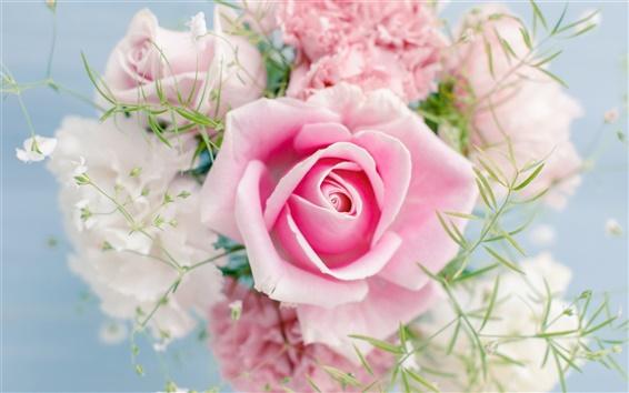 Wallpaper Pink rose, beautiful flowers