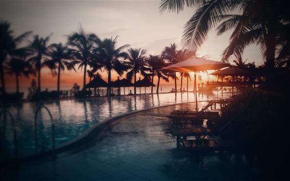 Wallpaper Pool, water, beach, ocean, palm trees, sunset
