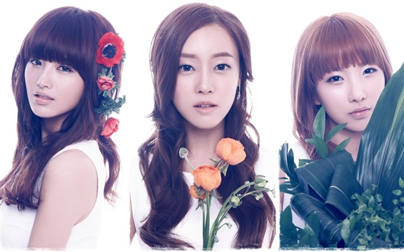 Wallpaper Rainbow Korean music girls 02
