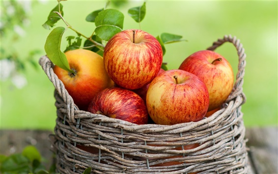 Wallpaper Red apples, fruit, basket