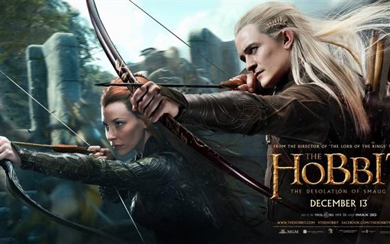 Wallpaper The Hobbit: The Desolation of Smaug HD