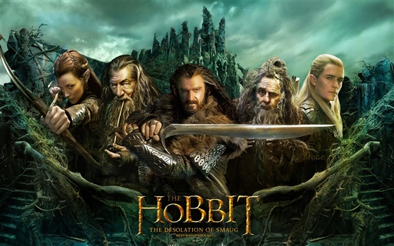 Wallpaper The Hobbit: The Desolation of Smaug