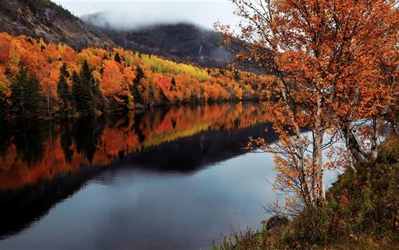 Wallpaper Canada, Newfoundland and Labrador, autumn, trees, river