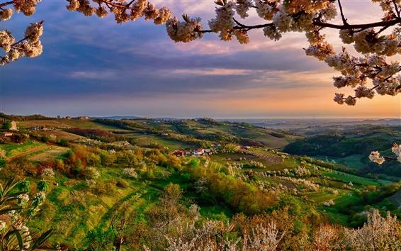 Fondos de pantalla Italia, Lombardía, Collio, en primavera, el valle, el atardecer, las flores, los árboles