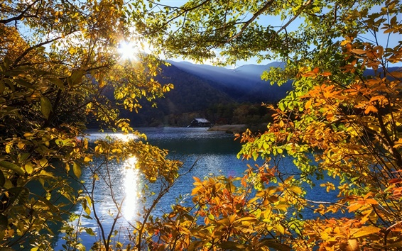 Wallpaper Japan, Nikko, Tochigi, mountain, lake, trees, sun rays, autumn